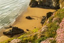 Cornish Beaches / Some of the fine beaches in Cornwall