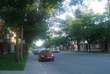 Dans mon quartier / Voici une série de photos qui vont montrer un côté visuellement agréable de différents quartiers de Montréal. J'aime les arbres et les efforts que font mes concitoyens pour fleurir l'environnement. La première série présente quelques éléments de mon quartier de Mercier-Ouest.