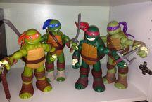 turtles we have