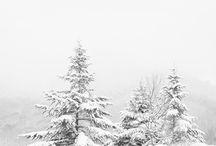 /Winter/