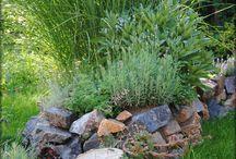 Skalky - zahradka