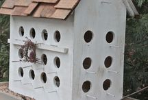 Bird Houses / by Brent Lohmann