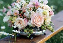 Flower arrangemens