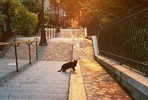 _Paris A tout à l'heure!! / by Aniele de Barros