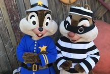 Disney: Chip & Dale costumes