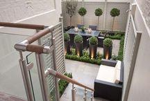 Eaton Terrace 1