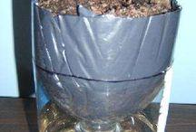 Pop bottle growing pots