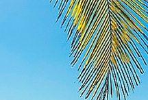 Destination: Beaches / Travel to the best beach locations around the globe