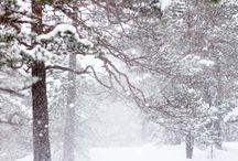 Bilder fra Hjertet - Vinter / Bli med og oppdag vinterens språk, dens skjønnhet og magi... Hva har vinterens mange ansikter å fortelle oss?