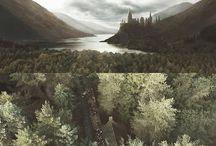 - Harry Potter -