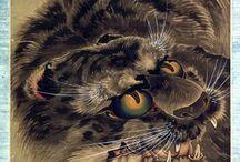 tigers'n'cats