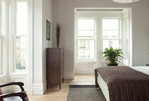 Guest room wall color