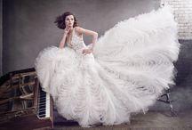 Lazaro Fall 2016 Bridal Collection / Lazaro Fall 2016 Bridal Collection - Designer Wedding Dresses. Available at Designer Bridal Room, Hong Kong