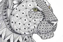 Luipaardshoofd / kleurplaat