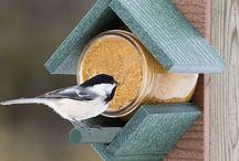 Bird feeders and Baths