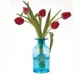 Glassicious / Beautiful glassware