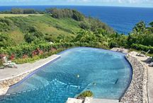 Swimming pools / Lots of great pools, mostly here on Maui.