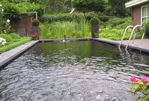 Zwemvijvers / Aanleg en onderhoud zwemvijvers in Gelderland en Overijssel door Vos Tuinvisie. http://www.vostuinvisie.nl/tuinaanleg/zwemvijveraanleg/