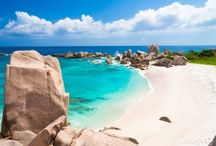 Playas Gecko