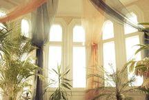 Home: dream zen house