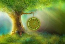 Tijd vliegt