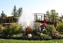 The Grounds of Spruce Meadows / The outdoor spaces here at Spruce Meadows offer something for everyone! #SpruceMeadows  / by Spruce Meadows Calgary, AB