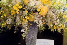 Wedding / by Nataline Joseph
