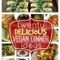 Vegetarian lunch ideas