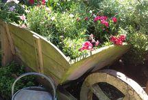 Giardini e c. / N natura e giardinaggio