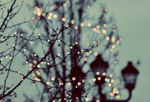 Autumnwinter