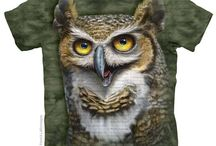 OWLS / A collection of beautiful owls, please pin any owl related items on this board, please share board and pins with friends. My t-shirts are for sale on the link below http://www.ebay.com/usr/americanflag911
