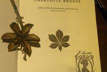 Jane Eyre / Della storia più appassionante della mia vita.......