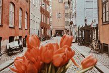 Copenhagen, Denmark local guide
