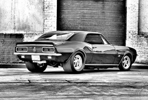 Camaro / by Mary Goutermont Standard