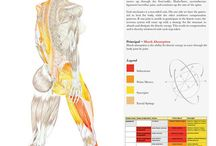 tesis cadenas muscular