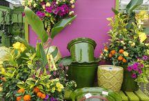 pot and plant centre