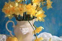 Tavasz virágai...