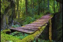 landschaften, natur