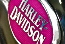 Sexy Pink Harley Collections  For Jan