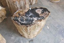 indonesia petrified wood cv.karya bersama / petrified wood indonesia