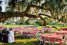 Southern and Rustic Weddings / A combination of charm, elegance, and a good time.