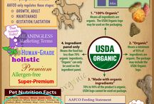 Awesome Infographics / Infographics for the pet industry, writing infographics, and more.