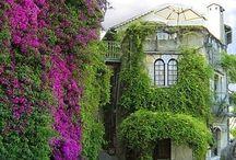 a world filled with beatiful places / En billedserie med interessante og vakre steder i verden