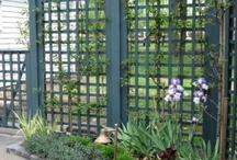 Gardening_Fencing