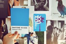 Pantone Project / Pantone Project