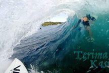 DMS Surfboards Blog