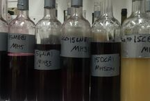 Wine Production at Messina Hof