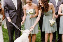 Cande Bridesmaids