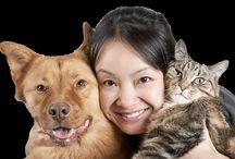 Love My Pets