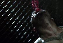 Bobby Razak's MMA Videos